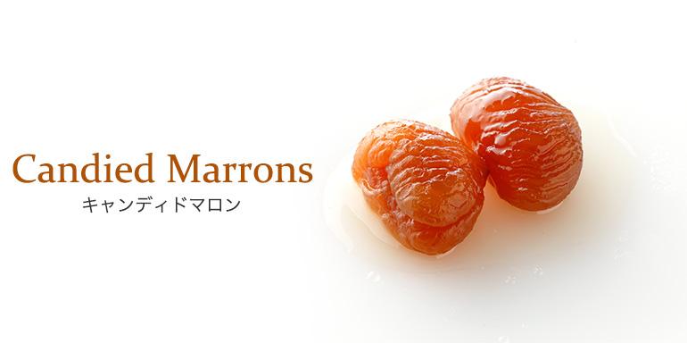 製菓向け製品 キャンディドマロン